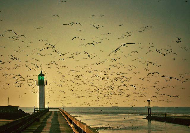 lighthouse-116524_640