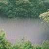 灵命日粮:奇迹之雨